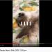 Skærmbillede 2020-04-06 kl. 14.14.44 thumbnail
