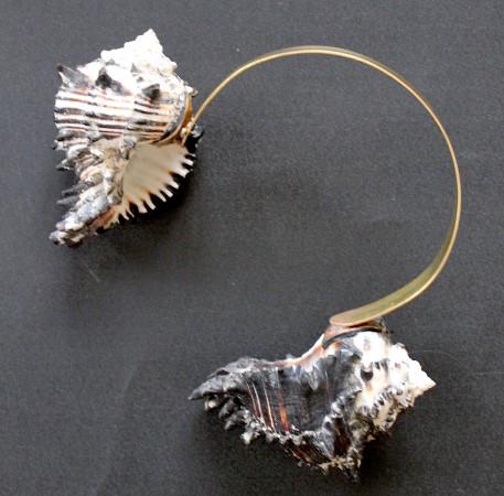 Conches. Puerto Escondido. Oaxaca. 20 x 26 cm. Brass